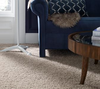 Polypropylene (Olefin) Carpet